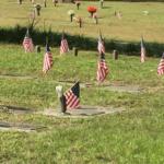 veterans-day-2016-update